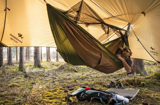 Lasy Państwowe otwierają nowe obszary do nocowania na dziko